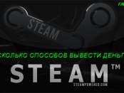 Несколько способов как можно вывести деньги steam