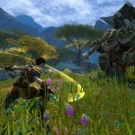 Kingdoms-of-Amalur-Reckoning-3