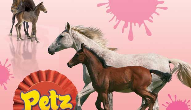 Horsez-Стань-чемпионом-0