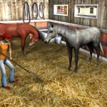 My-Riding-Stables-1
