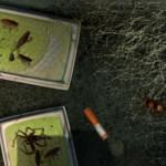 Bad-Mojo-Путь-таракана1