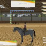 Лошадь-моей-мечты