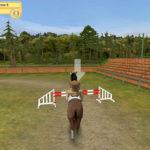 конный-клуб-моя-лошадка-4