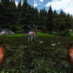 Bear-Simulator4