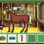 Pferd-&-Pony